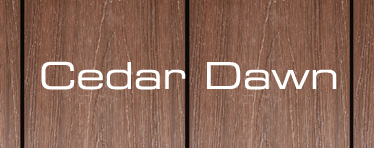 Cedar Dawn